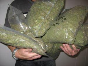 marihuana1